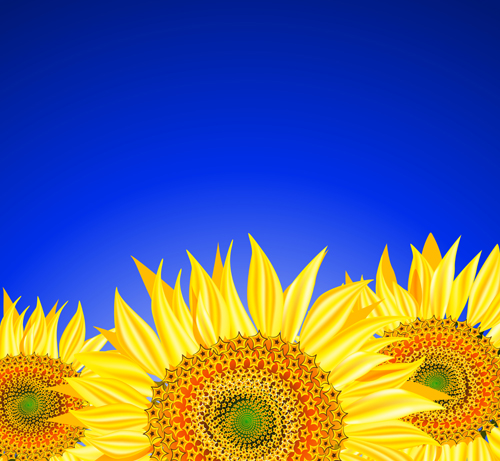 Beautiful sunflowers background vector 01