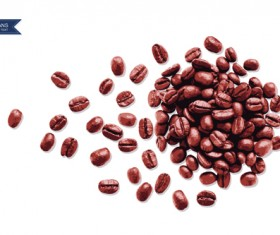 Coffee beans with white background vector 02