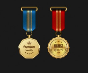 Gorgeous medal award vector 01