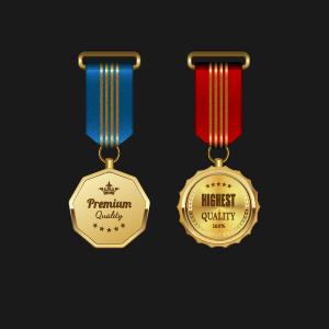 Gorgeous medal award vector 01