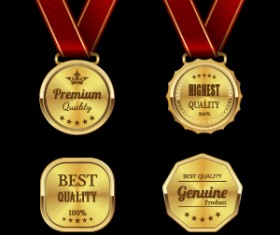 Gorgeous medal award vector 02