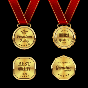 Gorgeous medal award vector 02