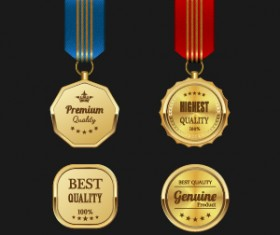Gorgeous medal award vector 03