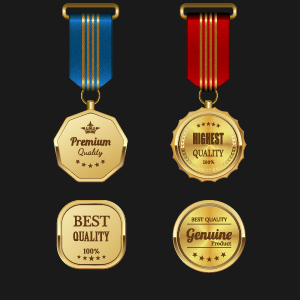 Gorgeous medal award vector 03