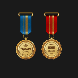Gorgeous medal award vector 05
