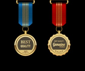 Gorgeous medal award vector 07