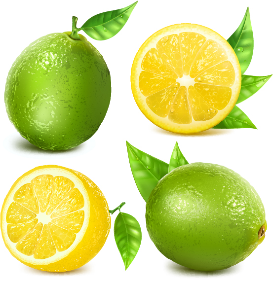lemon vector free download - photo #6