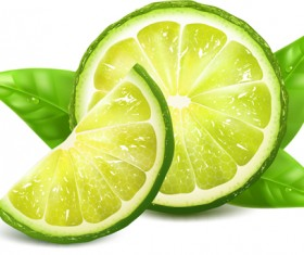 Juicy lemon creative vector 02