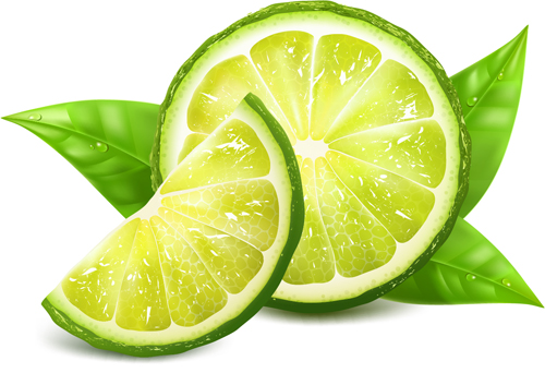 lemon vector free download - photo #18