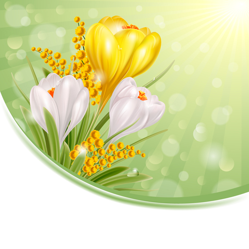 Shiny White With Yellow Flowers Vectors Background 01