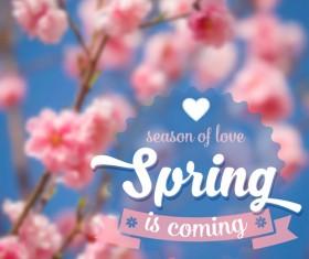 Spring flower blurred background vector set 01