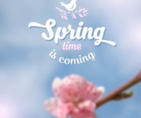 Spring flower blurred background vector set 02