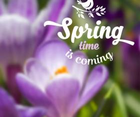 Spring flower blurred background vector set 03