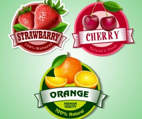 Cherry with strawberry and orange labels vector