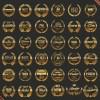 Gold premium quality labels vectors
