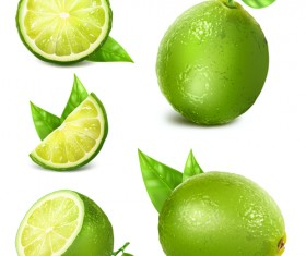 Green lemon vector material