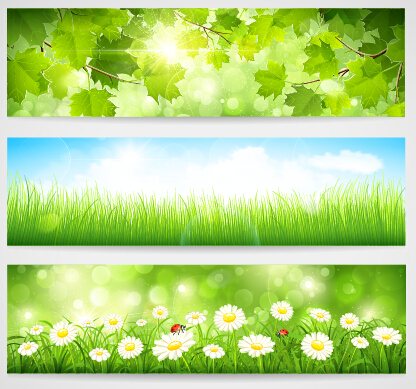 banner green