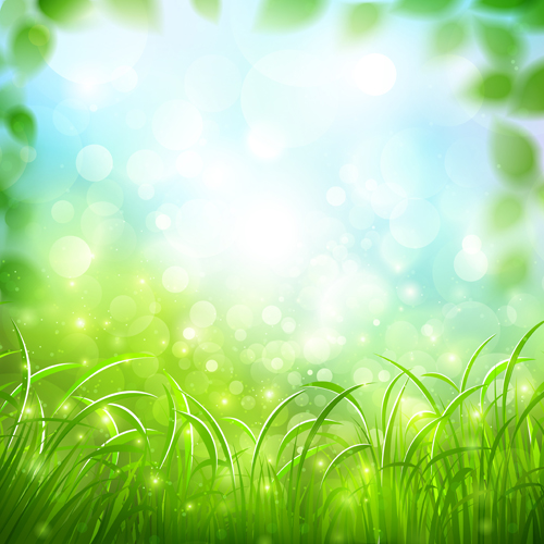 Nature Green Blurred Background Vector Background Free