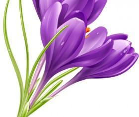 Purple flower shiny vector