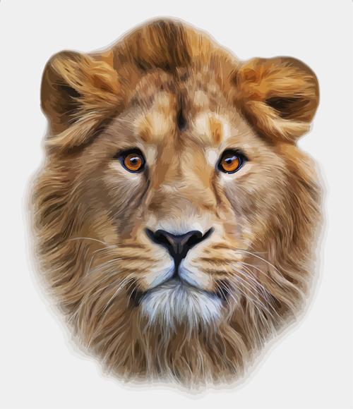 Download Realistic Lion head design vector free download