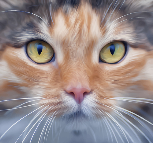 Realistic Cat Face Design Vector Free Download