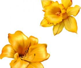 Realistic flowers beautiful vector set 03
