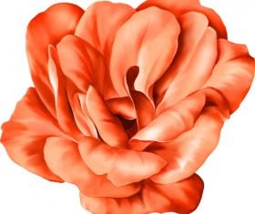 Realistic flowers beautiful vector set 06