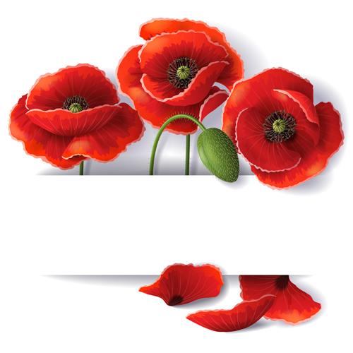 poppy red background - photo #19