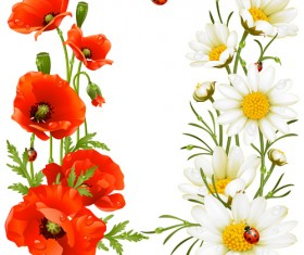 Red with white poppy vector background