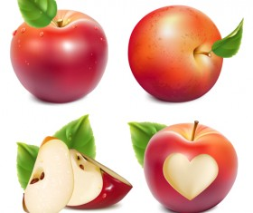 Shiny red apples vector design