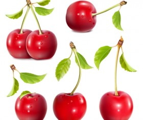 Shuilingling cherry vector material