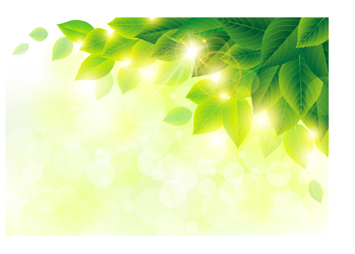 Spring sunlight with green leaves background vector 01 ...