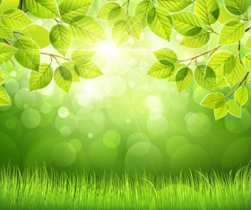Spring sunlight with green leaves background vector 02