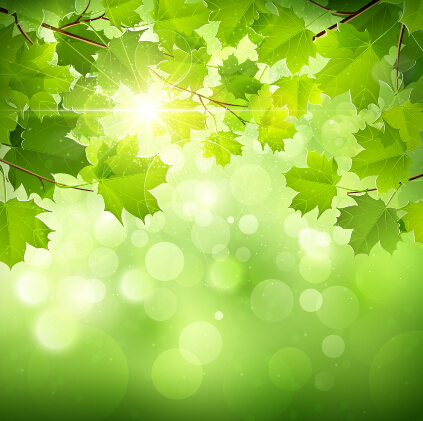 Abstract green leaves vector background free vector download ...