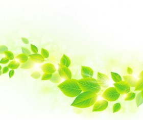 Spring sunlight with green leaves background vector 04