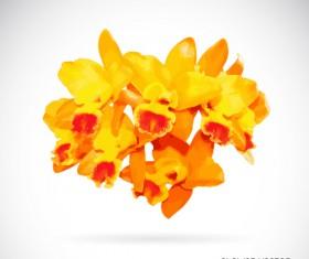 Yellow flowers beautiful vectors