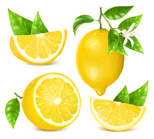 Yellow Lemon Vector Material Vector Food Free Download