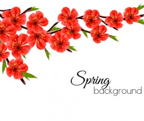 Beautiful red flowers spring vectors background