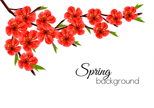 Beautiful Red Flowers Spring Vectors Background Free Download