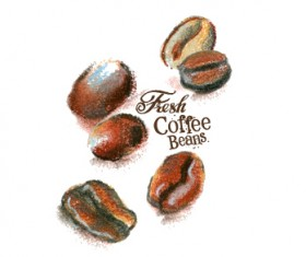 Coffee beans hand drawing vectors 01