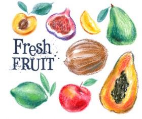 Colored drawn fruits vectors material 03
