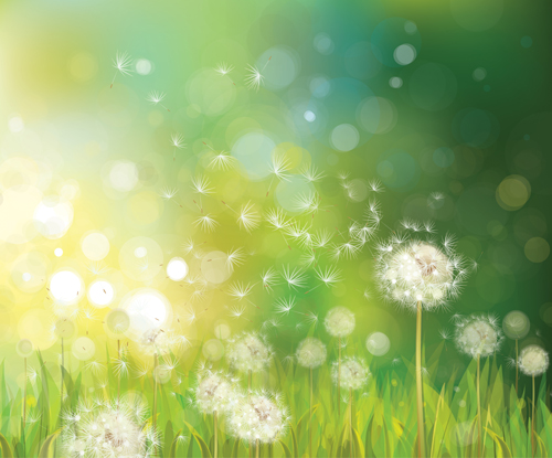 Dandelion and green nature background vector vector background free