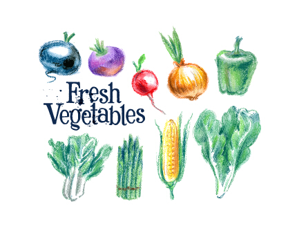Hand drawn fresh vegetables colored vector 03
