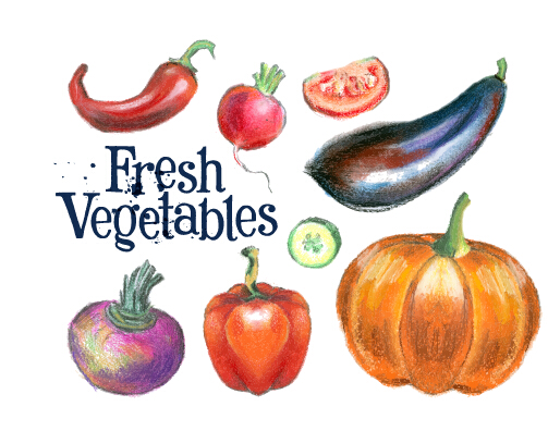 Hand drawn fresh vegetables colored vector 04