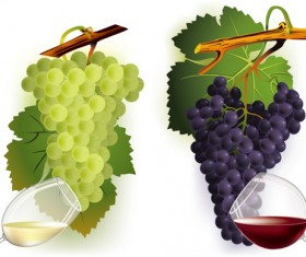 Vector Juicy grapes design graphic set 04