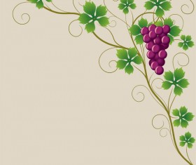 Vector Juicy grapes design graphic set 06