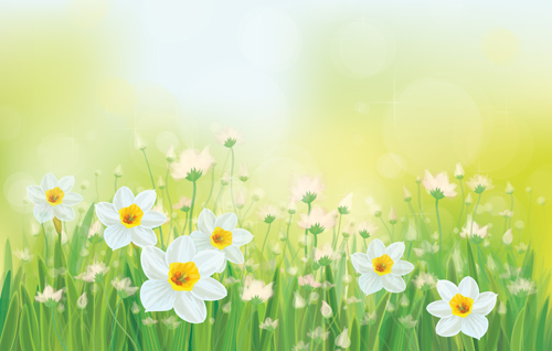 White flowers spring beautiful background vector vector background white flowers spring beautiful background vector mightylinksfo Images