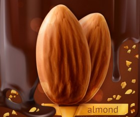 Almond with chocolate background vector material