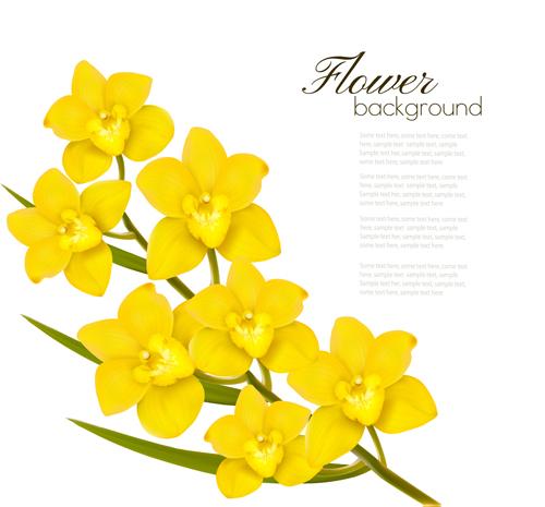 Elegant yellow flowers art background vector 02 free download elegant yellow flowers art background vector 02 mightylinksfo