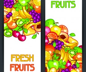 Fresh fruit vertical banner vector